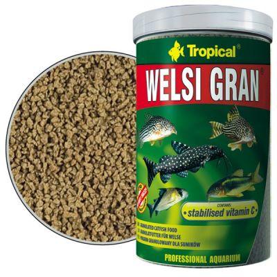 Tropical Welsi Gran 100 Gram