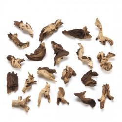 özelyem - Mopani Kökü Küçük Boy 15-25 cm