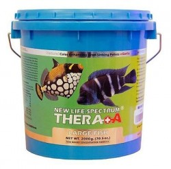 New Life Spectrum - New Life Spectrum Thera A Large Fish 2000 Gr.