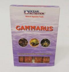 Ocean Nutrition - Ocean Nutrition Dondurulmuş Gammarus 100 gr.