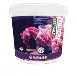 ReeFlowers - Reeflowers Caledonia Reef Salt 22,5 Kg.