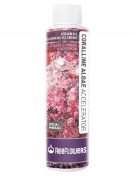 ReeFlowers - Reeflowers Coralline Algae Accelerator 250 ML