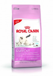 Royal Canin - Royal Canin Fhn Babycat 34 Yavru Kedi Maması 4Kg