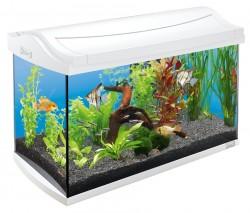 Tetra Aquaart 60 L LED Cam Akvaryum - Thumbnail