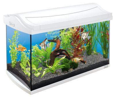 Tetra Aquaart 60 L LED Cam Akvaryum