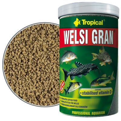 Tropical Welsi Gran 100 Gram
