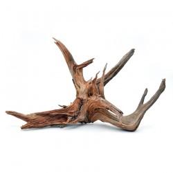 özelyem - Mangrow Kökü Büyük Boy 30-56 cm