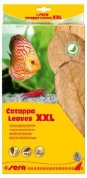 Sera - Sera Catappa Yaprağı XXL 32 cm 10 Adet