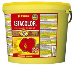 Tropical - Tropical Asta Color Discus Flake 11 Lt / 2000 Gr.