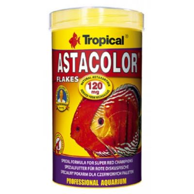 Tropical Asta Colour Discus 100 Gr.