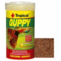 Tropical - Tropical Guppy Pul Lepistes Yemi 100 ML
